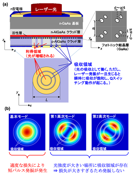 (a)利得と吸収を2次元的に配置した短パルスフォトニック結晶レーザーの模式図。(b)吸収領域の2次元的な配置の例。